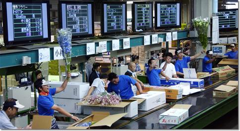 札幌花き地方卸売市場の様子